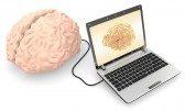 cerebro, computadora